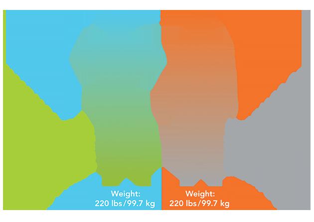 body-composition-mannatech-truhealth